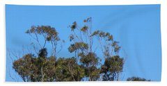 Beach Towel featuring the photograph Bird In A Tree by Mark Blauhoefer