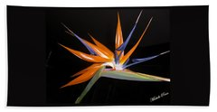 Bird Of Paradise Beauty 4 Beach Sheet