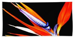 Bird Of Paradise Flower With Oil Painting Effect Beach Towel by Rose Santuci-Sofranko