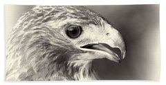 Bird Of Prey Beach Towel by Dan Sproul