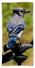 Bird On A Bird Beach Towel