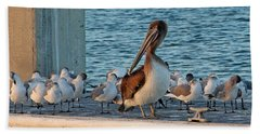 Birds - Among Friends Beach Sheet by HH Photography of Florida