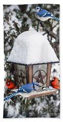 Birds On Bird Feeder In Winter Beach Towel