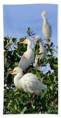 Birds Quartet Beach Towel