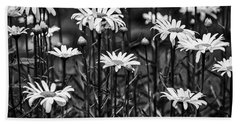 Black And White Daisies Beach Towel
