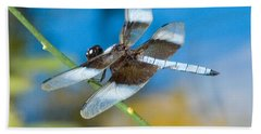 Beach Towel featuring the photograph Black And White Dragonfly by Mae Wertz