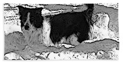 Beach Towel featuring the photograph Black And White In Snow by Michael Porchik