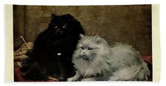 Black And White Persian Cats Beach Towel