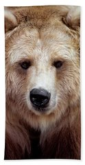 Black Bear Variation In Brown Color Beach Towel
