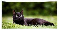 Black Cat Lying In Garden Beach Towel