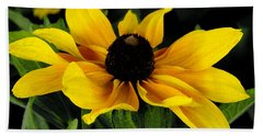 Beach Towel featuring the photograph Black Eyed Susan  by James C Thomas