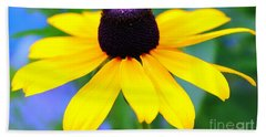 Beach Towel featuring the photograph Black Eyed Susan by Judy Palkimas