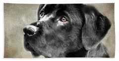 Black Lab Portrait Beach Sheet by Eleanor Abramson