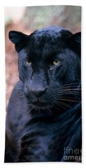 Black Leopard Beach Towel by Mark Newman