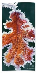Beach Towel featuring the photograph Black Oak Leaf Rime Ice Yosemite National Park California by Dave Welling