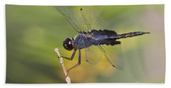 Beach Sheet featuring the photograph Black Saddlebags by Bryan Keil