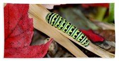 Black Swallowtail Butterfly Caterpillar Beach Sheet