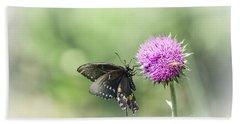 Black Swallowtail Dreaming Beach Towel