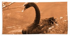 Beach Sheet featuring the photograph Black Swan by Leticia Latocki