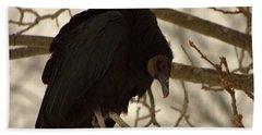 Black Vulture 4 Beach Towel