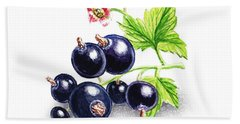 Blackcurrant Still Life Beach Towel by Irina Sztukowski