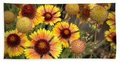 Beach Towel featuring the photograph Blanket Flowers  by Belinda Greb