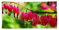Romantic Bleeding Hearts Beach Sheet