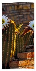 Blooming Cactus Beach Sheet