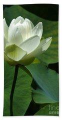 Blooming White Lotus Beach Sheet