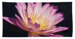 Beach Towel featuring the photograph Blooming With Beauty by Chrisann Ellis