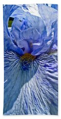 Beach Towel featuring the photograph Blue Bearded Iris by Joann Copeland-Paul