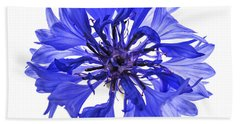 Blue Cornflower Flower Beach Towel