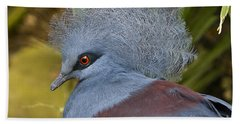 Beach Towel featuring the photograph Blue-crowned Pigeon by David Millenheft