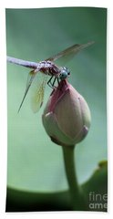 Blue Dragonflies Love Lotus Buds Beach Towel