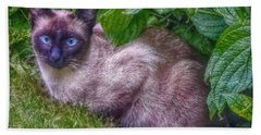 Beach Towel featuring the photograph Blue Eyes by Hanny Heim