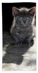 Blue Eyes Beach Sheet