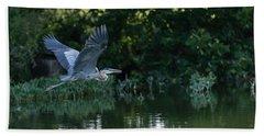 Blue Heron Take-off Beach Sheet
