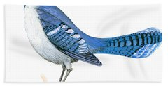 Blue Jay  Beach Towel by Anonymous