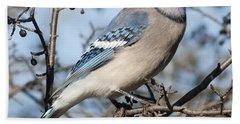 Blue Jay.. Beach Sheet