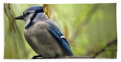 Blue Jay On A Misty Spring Day Beach Towel by Lois Bryan