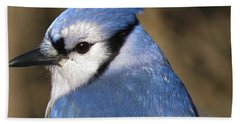 Blue Jay Profile Beach Towel by MTBobbins Photography