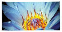 Blue Lotus Beach Towel by Cynthia Guinn