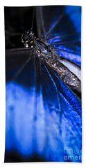 Blue Morpho Butterfly With Open Wings Beach Towel
