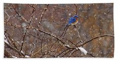 Beach Towel featuring the photograph Blue Norther by Gary Holmes