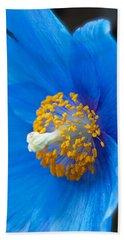 Blue Poppy Beach Sheet by Michael Porchik