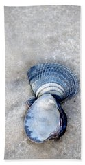 Blue Seashells Beach Towel