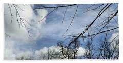 Beach Towel featuring the photograph Blue Skies Of Winter by Robyn King