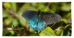 Blue Tinted Butterfly On A Leaf Beach Towel