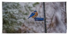 Bluebird In Snow Beach Sheet