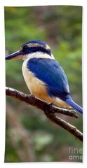 Bluebird In Suva Fiji Beach Sheet by Barbie Corbett-Newmin
